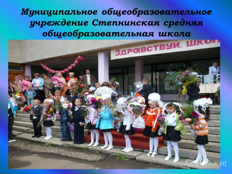 Муниципальное общеобразовательное учреждение Степнинская средняя общеобразовательная школа