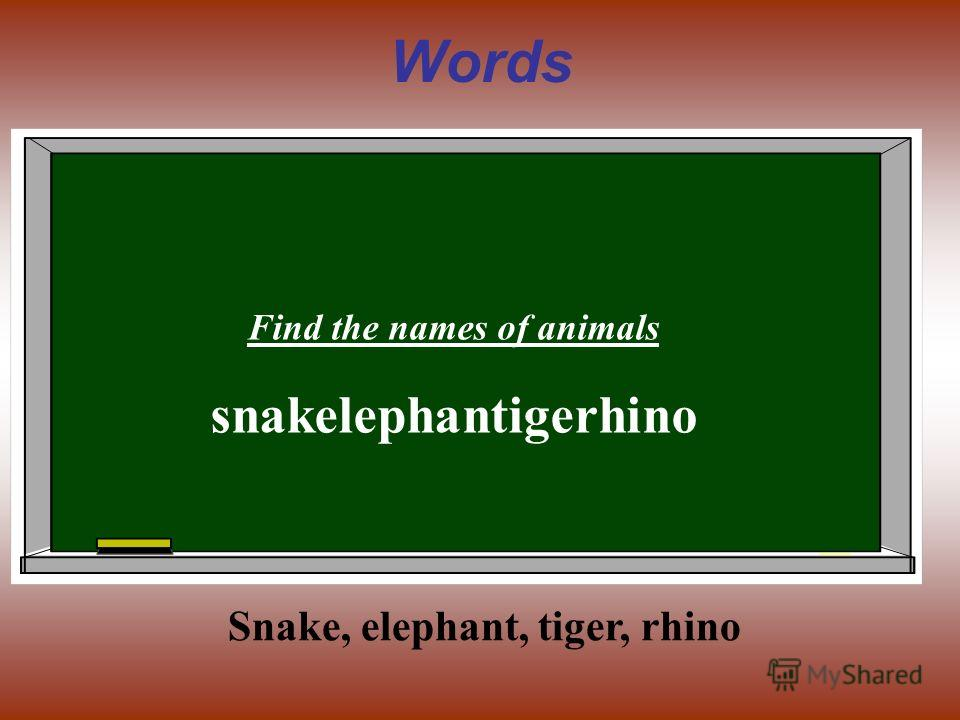 Words Find the names of animals snakelephantigerhino Snake, elephant, tiger, rhino