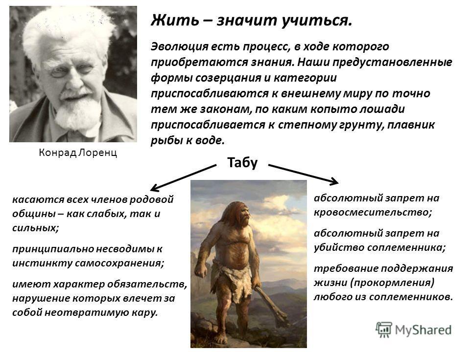 Жить – значит учиться. Эволюция есть процесс, в ходе которого приобретаются знания. Наши предустановленные формы созерцания и категории приспосабливаются к внешнему миру по точно тем же законам, по каким копыто лошади приспосабливается к степному гру