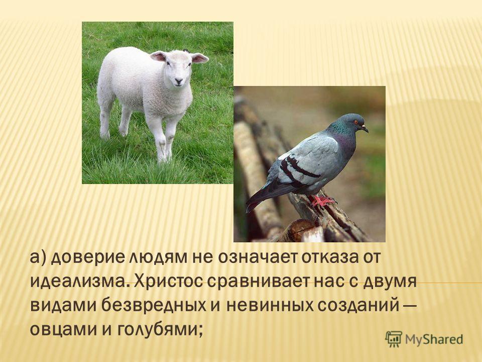 а) доверие людям не означает отказа от идеализма. Христос сравнивает нас с двумя видами безвредных и невинных созданий овцами и голубями;