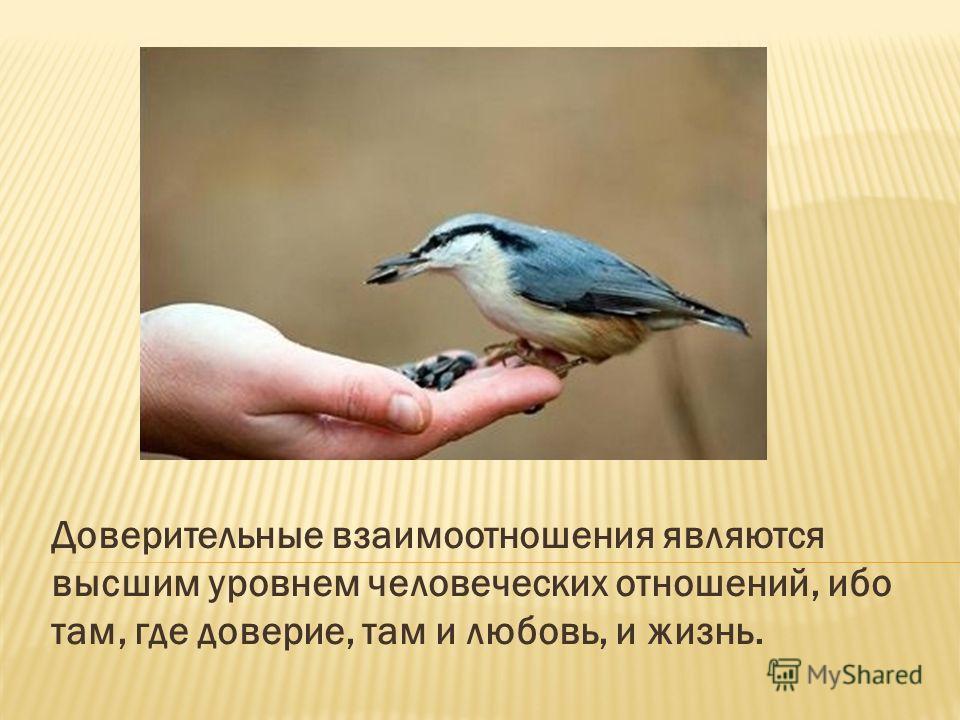Доверительные взаимоотношения являются высшим уровнем человеческих отношений, ибо там, где доверие, там и любовь, и жизнь.