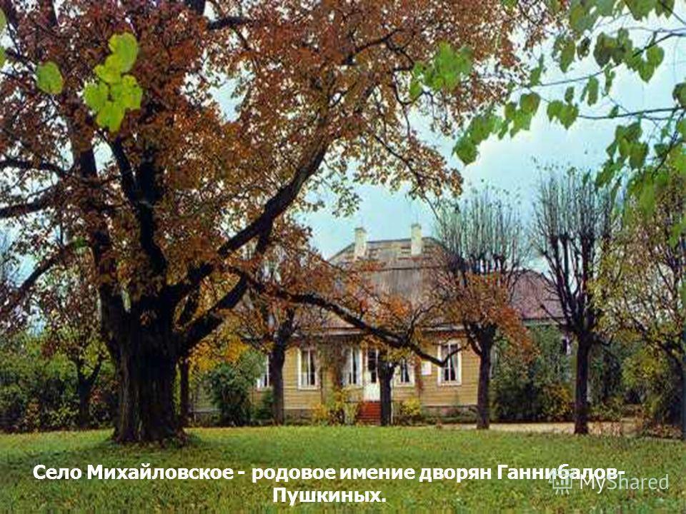 Село Михайловское - родовое имение дворян Ганнибалов- Пушкиных.