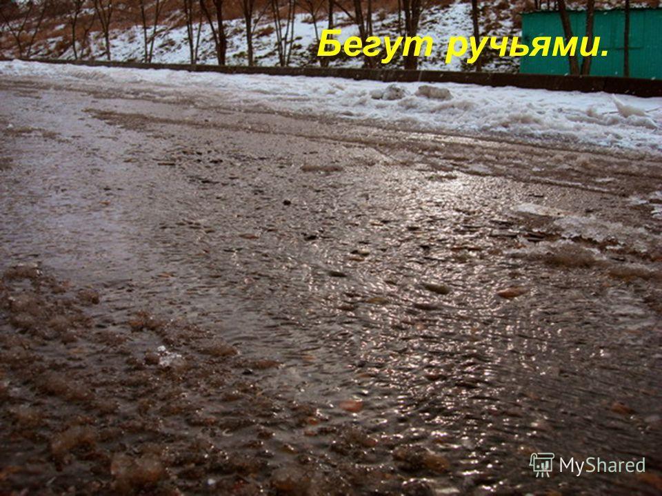 Увядший снег и талый лёд