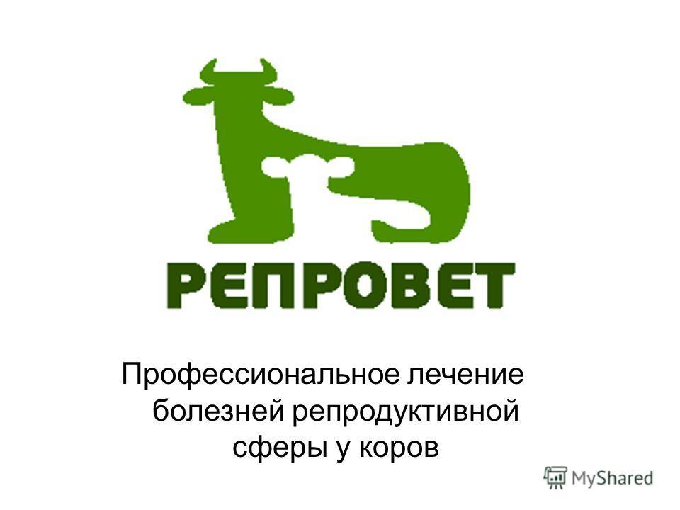 Профессиональное лечение болезней репродуктивной сферы у коров