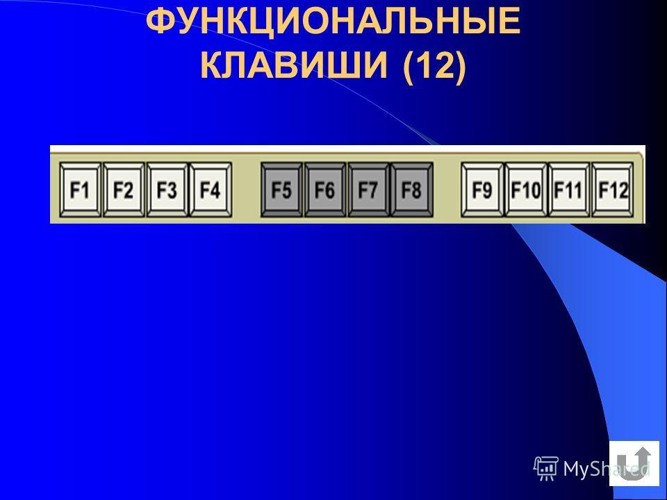 ФУНКЦИОНАЛЬНЫЕ КЛАВИШИ (12)