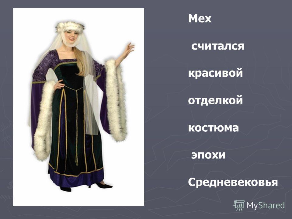 Мех считался красивой отделкой костюма эпохи Средневековья