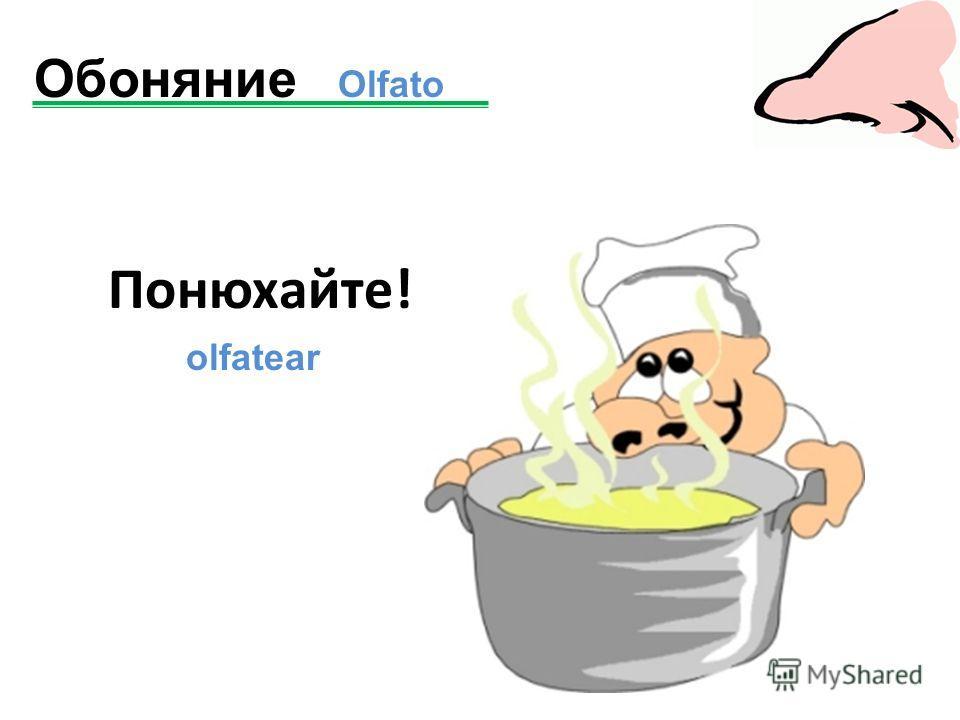 Понюхайте! olfatear Обоняние Olfato
