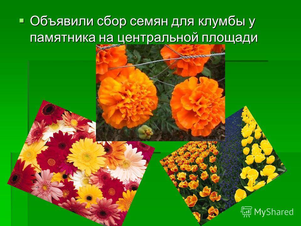 Объявили сбор семян для клумбы у памятника на центральной площади Объявили сбор семян для клумбы у памятника на центральной площади