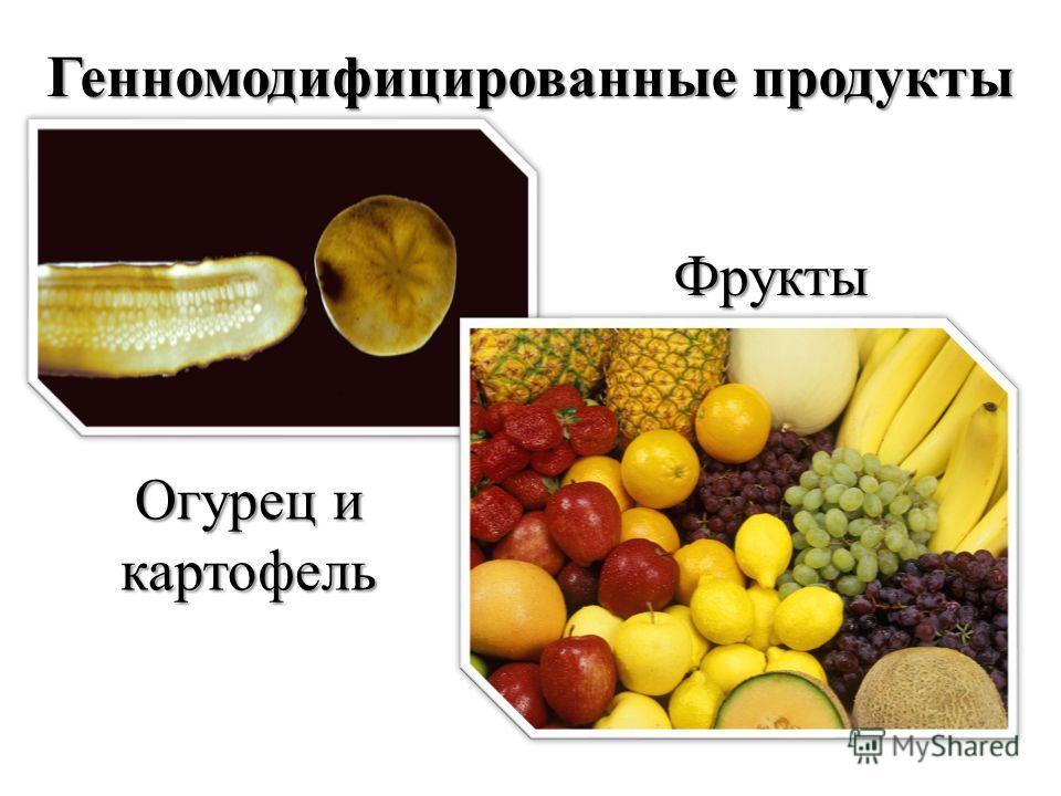 Генномодифицированные продукты Фрукты Огурец и картофель