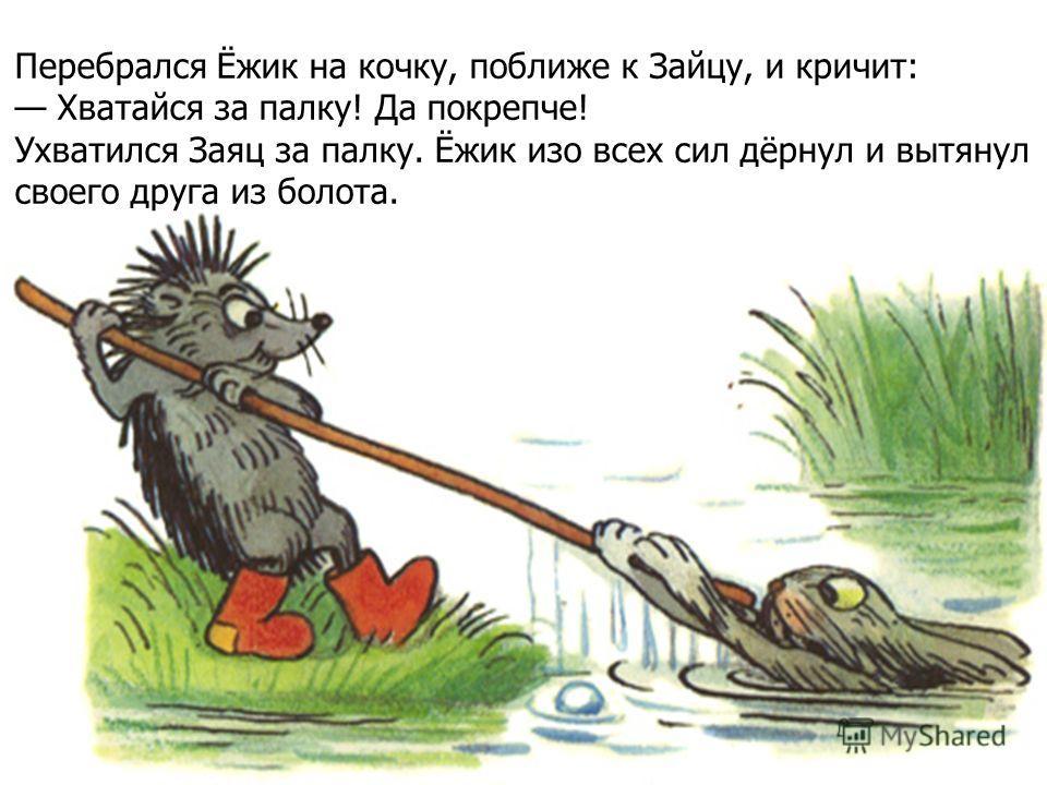 Перебрался Ёжик на кочку, поближе к Зайцу, и кричит: Хватайся за палку! Да покрепче! Ухватился Заяц за палку. Ёжик изо всех сил дёрнул и вытянул своего друга из болота.