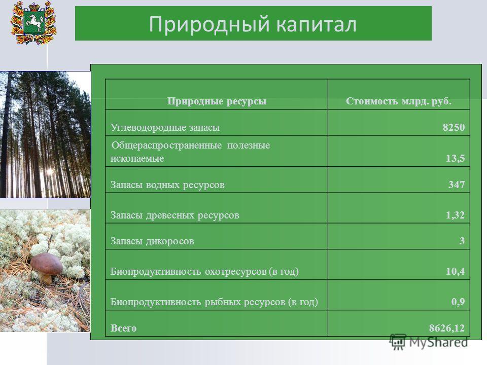 Природные ресурсыСтоимость млрд. руб. Углеводородные запасы8250 Общераспространенные полезные ископаемые13,5 Запасы водных ресурсов347 Запасы древесных ресурсов1,32 Запасы дикоросов3 Биопродуктивность охотресурсов (в год)10,4 Биопродуктивность рыбных