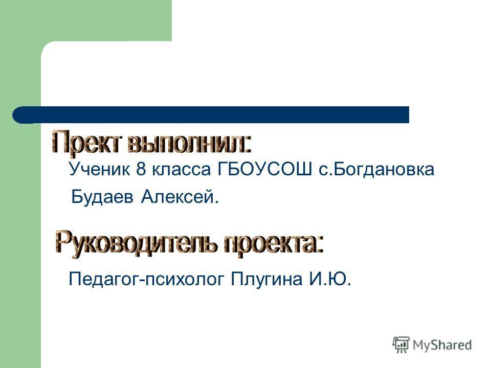 Ученик 8 класса ГБОУСОШ с.Богдановка Будаев Алексей. Педагог-психолог Плугина И.Ю.