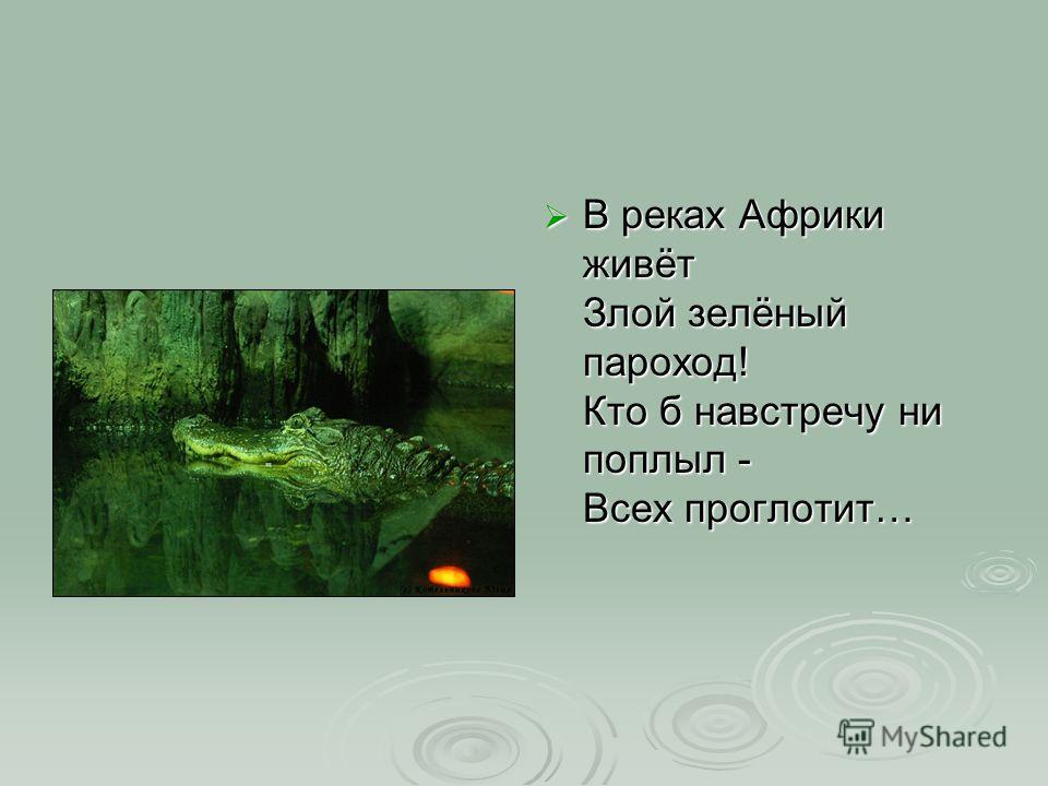В реках Африки живёт Злой зелёный пароход! Кто б навстречу ни поплыл - Всех проглотит… В реках Африки живёт Злой зелёный пароход! Кто б навстречу ни поплыл - Всех проглотит…