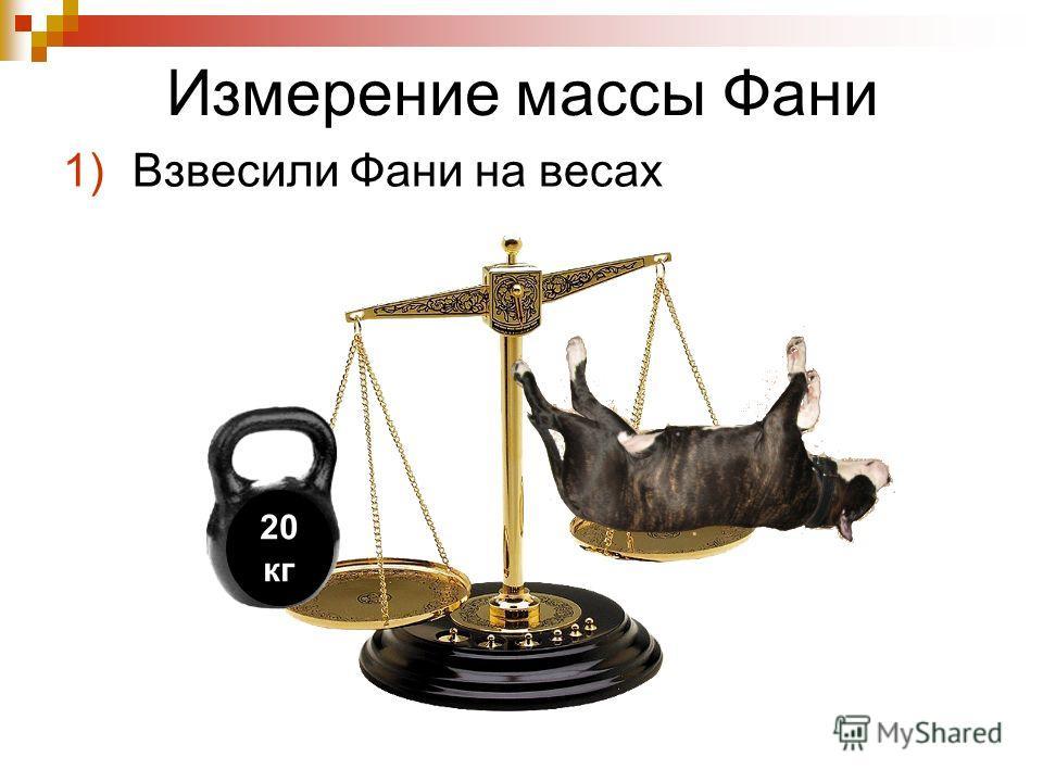 Измерение массы Фани 1)Взвесили Фани на весах 20 кг