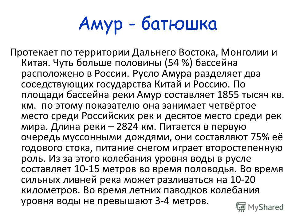 Амур - батюшка Протекает по территории Дальнего Востока, Монголии и Китая. Чуть больше половины (54 %) бассейна расположено в России. Русло Амура разделяет два соседствующих государства Китай и Россию. По площади бассейна реки Амур составляет 1855 ты