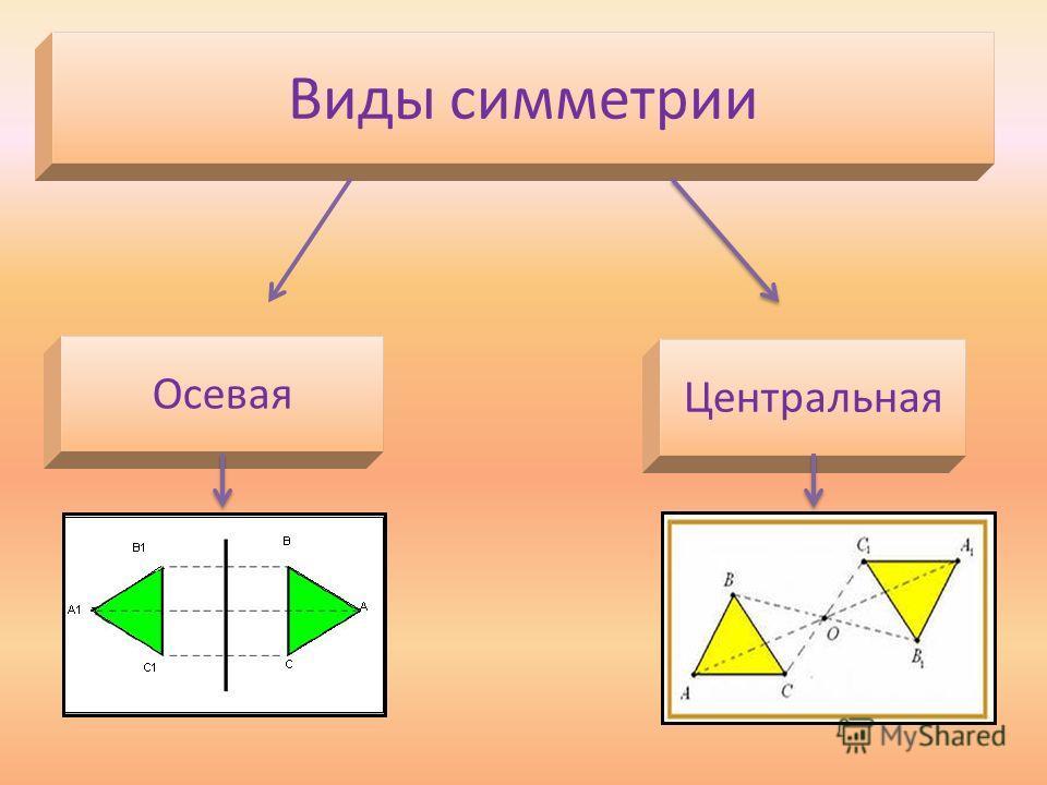 Виды симметрии Осевая Центральная