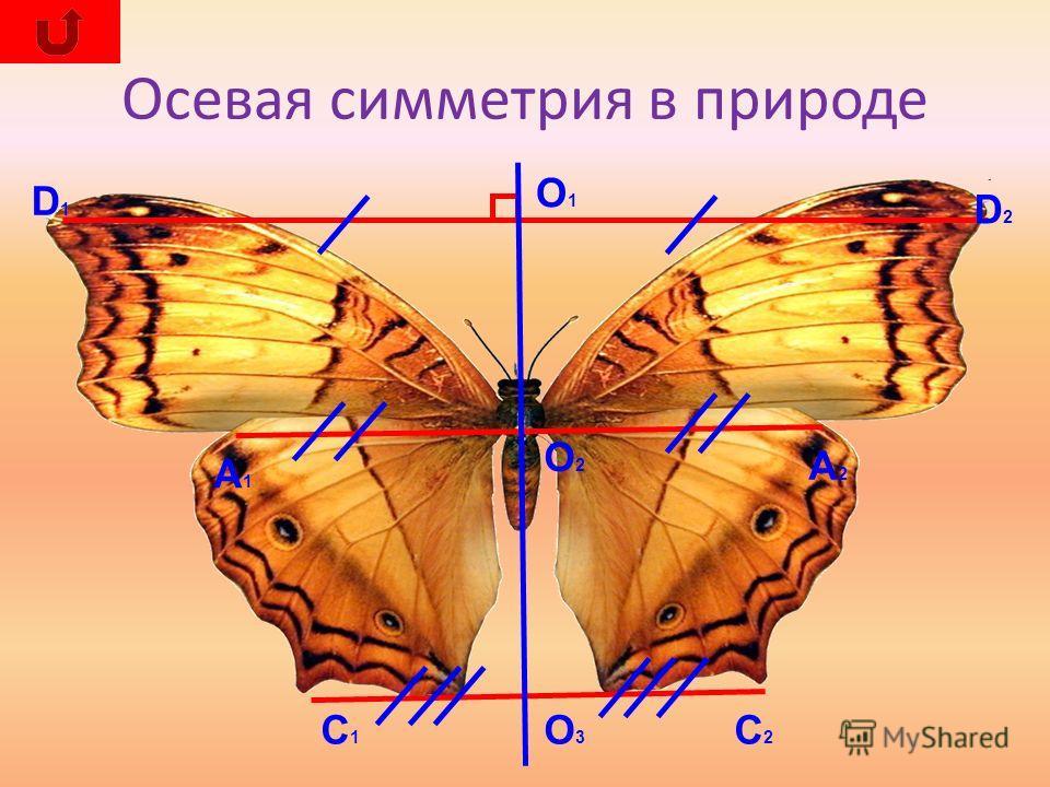 u043eu0441u0435u0432u0430u044f u0441u0438u043cu043cu0435u0442u0440u0438u044f u043au0430u0440u0442u0438u043du043au0438 u0441u043au0430u0447u0430u0442u044c.