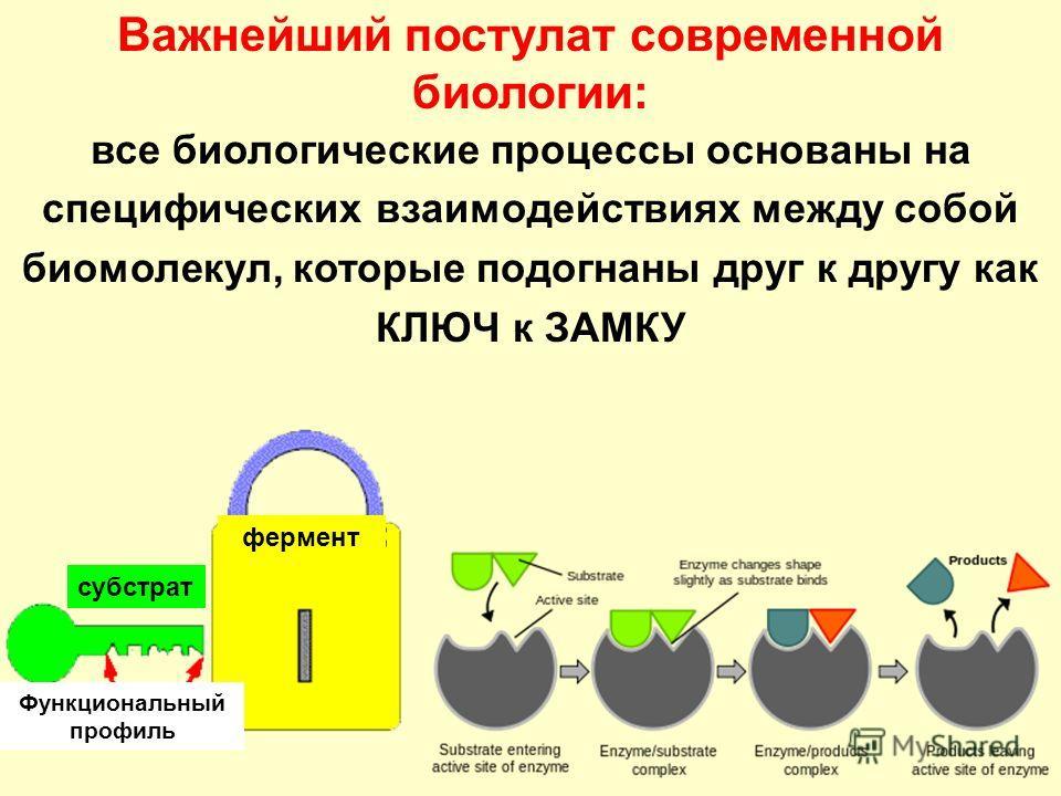 к ЗАМКУ субстрат фермент