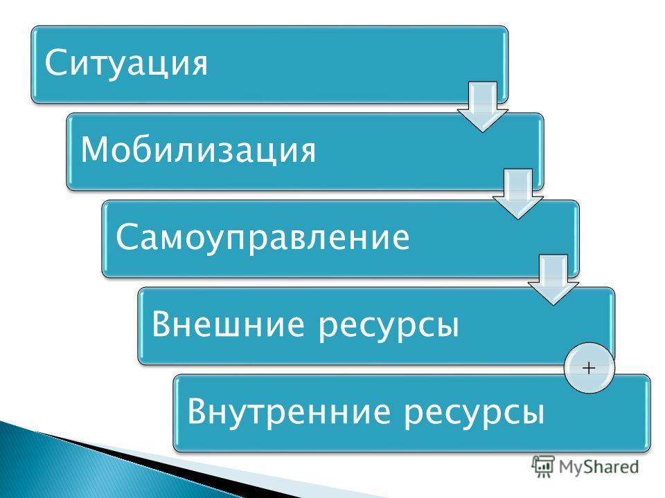 СитуацияМобилизацияСамоуправлениеВнешние ресурсыВнутренние ресурсы +