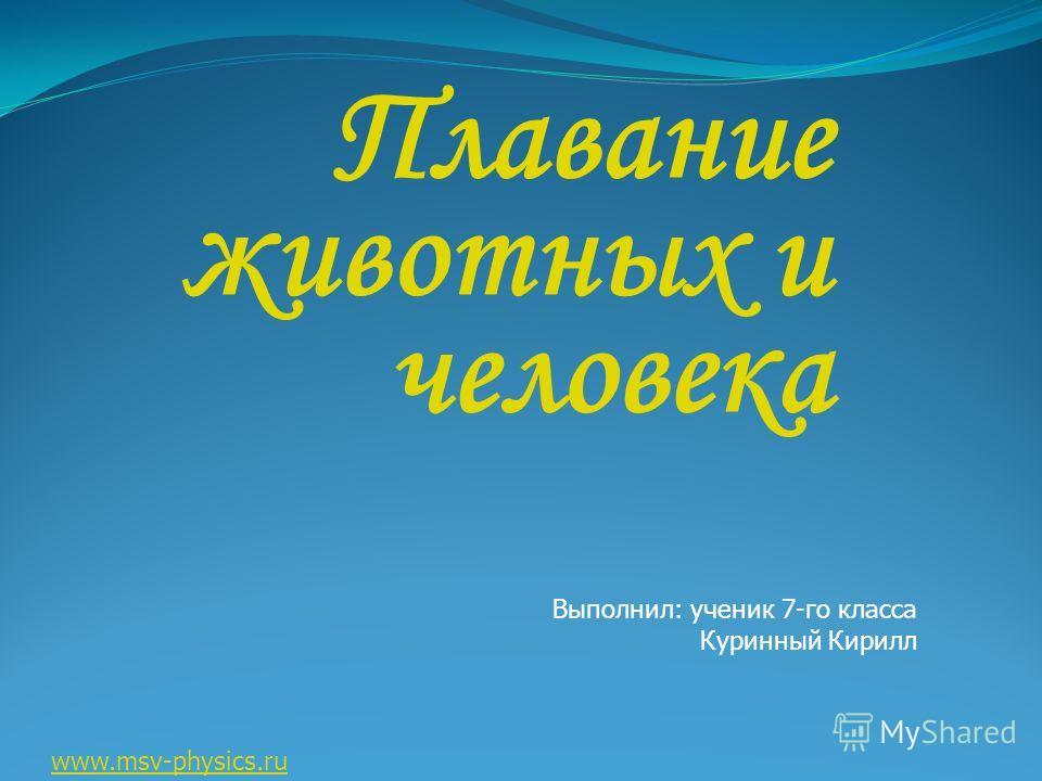 Плавание животных и человека Выполнил: ученик 7-го класса Куринный Кирилл www.msv-physics.ru