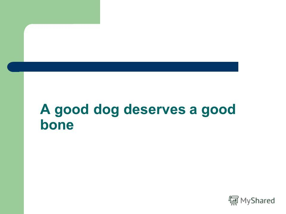 A good dog deserves a good bone