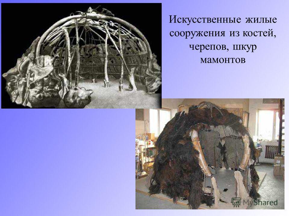 Искусственные жилые сооружения из костей, черепов, шкур мамонтов