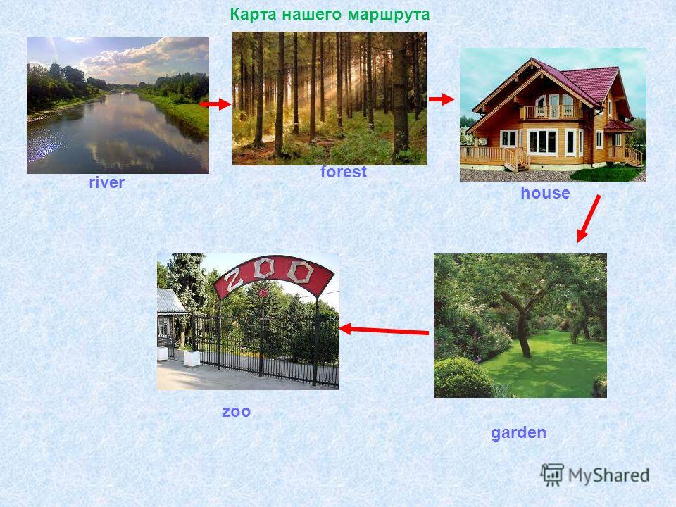 river forest house garden zoo Карта нашего маршрута