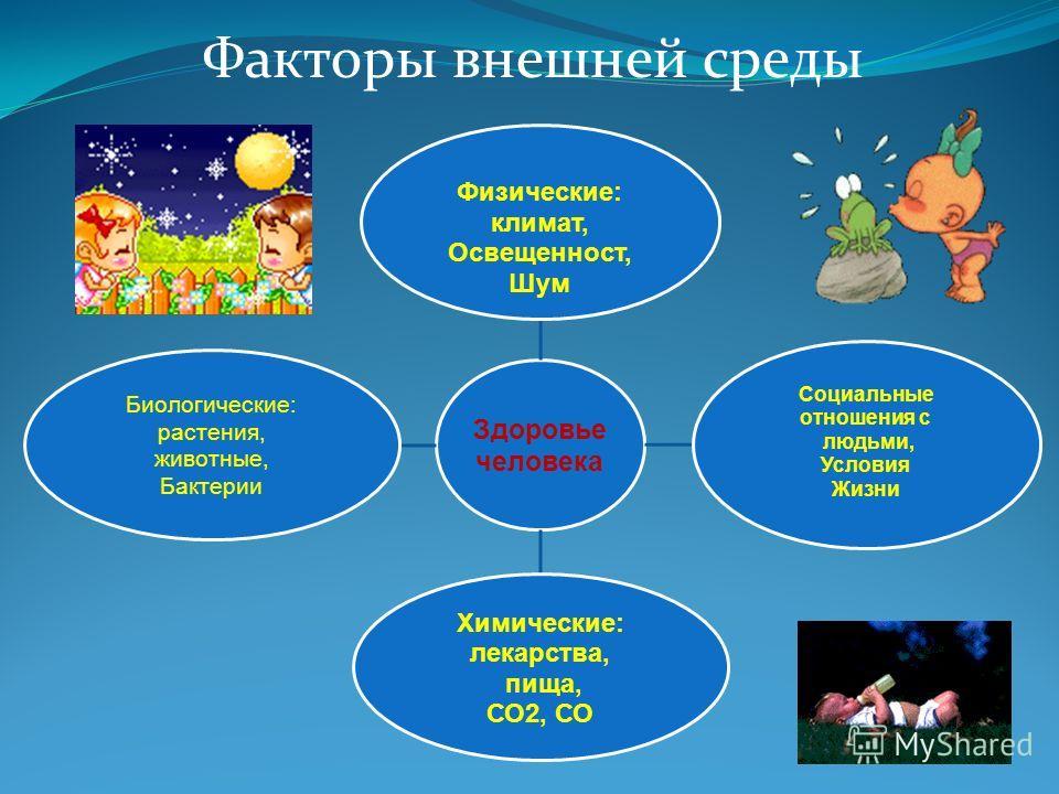 Факторы внешней среды Здоровье человека Физические: климат, Освещенност, Шум Социальные отношения с людьми, Условия Жизни Химические: лекарства, пища, СО2, СО Биологические: растения, животные, Бактерии
