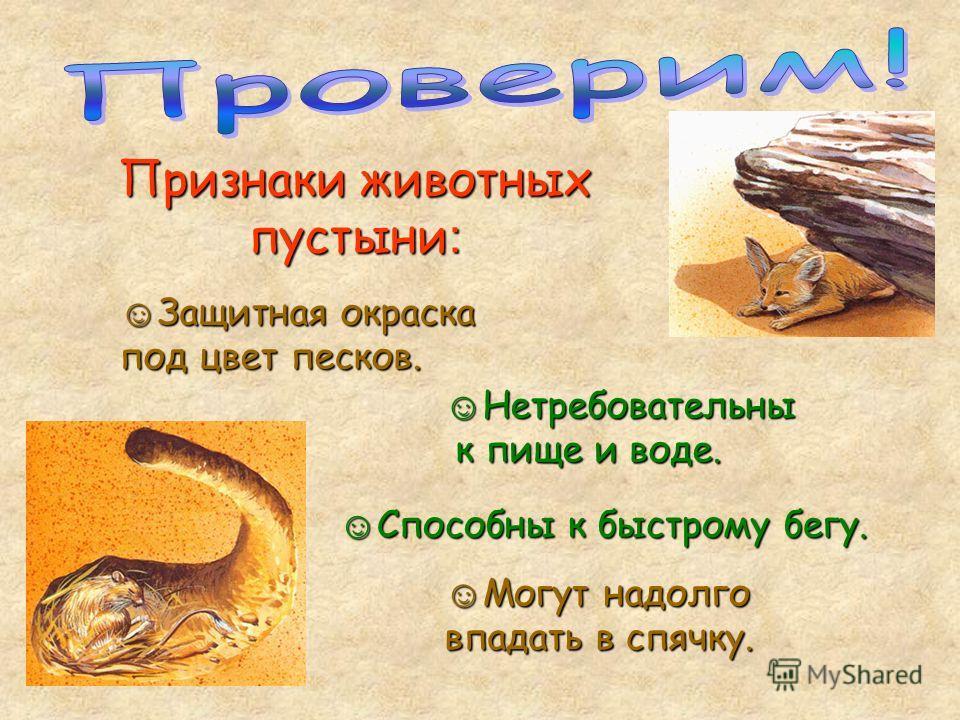 Признаки животных пустыни : Защитная окраска под цвет песков. Защитная окраска под цвет песков. Нетребовательны к пище и воде. Нетребовательны к пище и воде. Могут надолго впадать в спячку. Могут надолго впадать в спячку. Способны к быстрому бегу. Сп