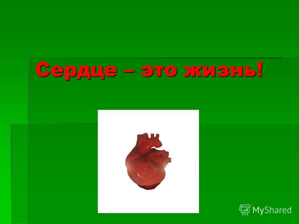 Сердце – это жизнь!