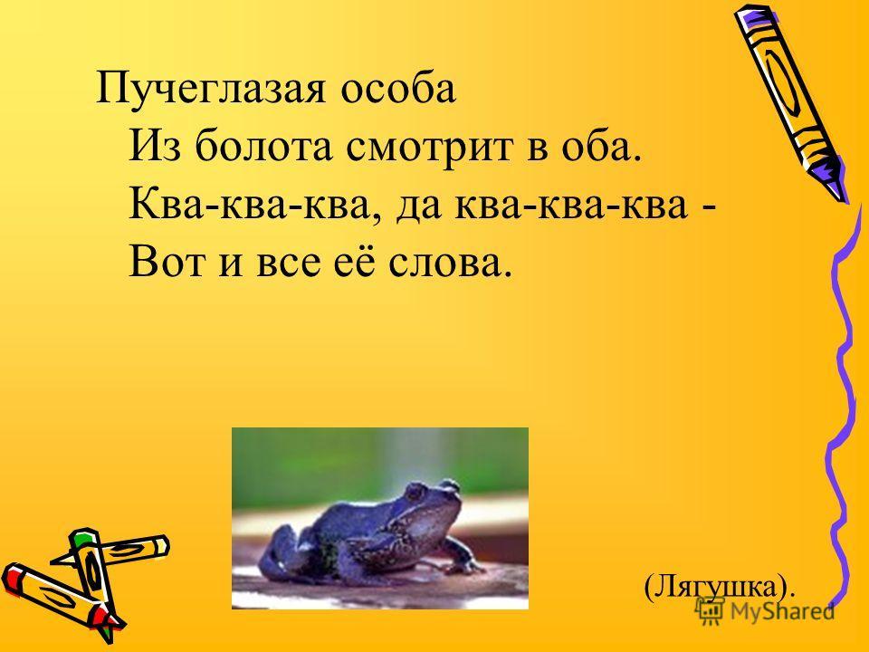 Пучеглазая особа Из болота смотрит в оба. Ква-ква-ква, да ква-ква-ква - Вот и все её слова. (Лягушка).