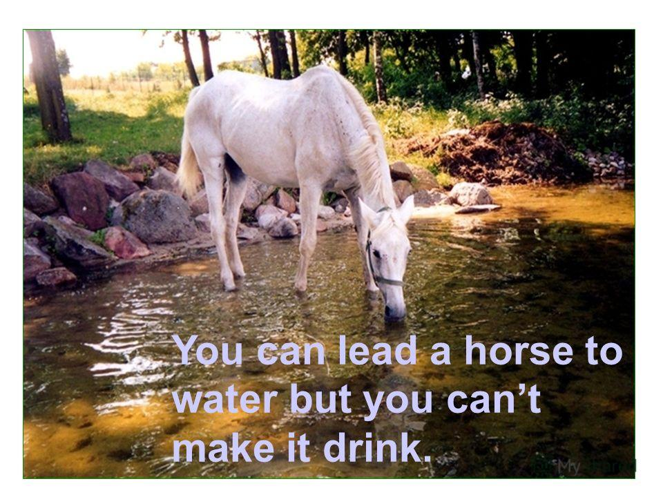 You can lead a horse to water but you cant make it drink.