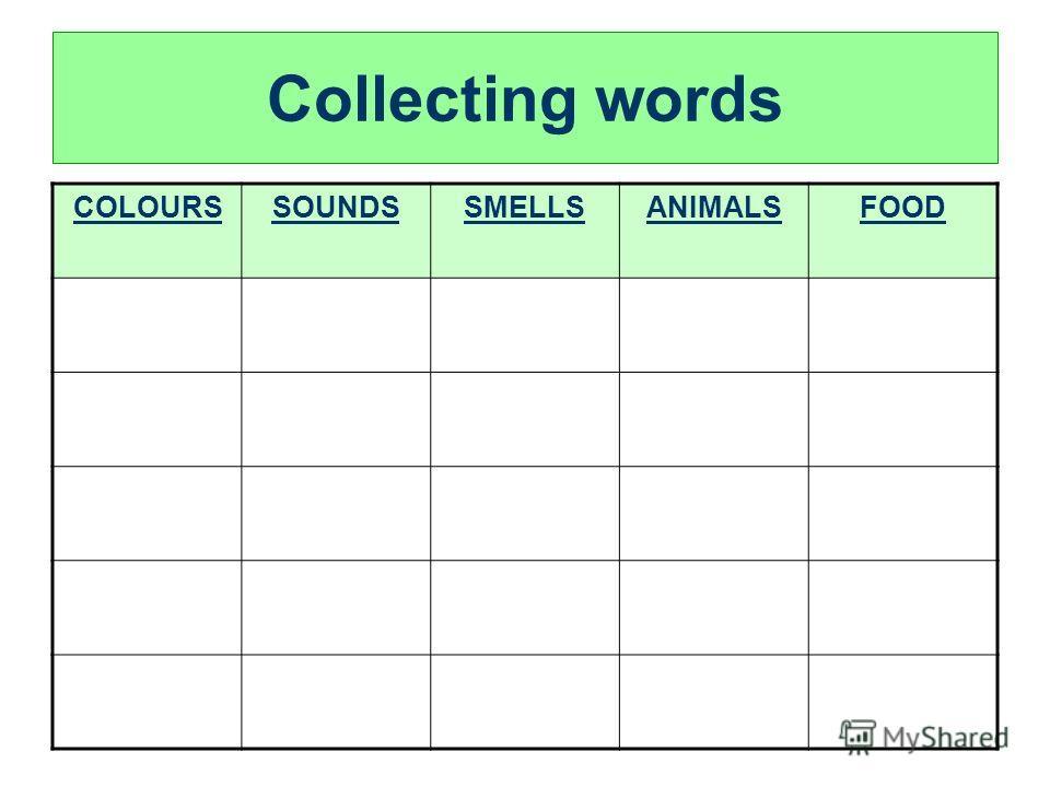 Collecting words COLOURSSOUNDSSMELLSANIMALSFOOD