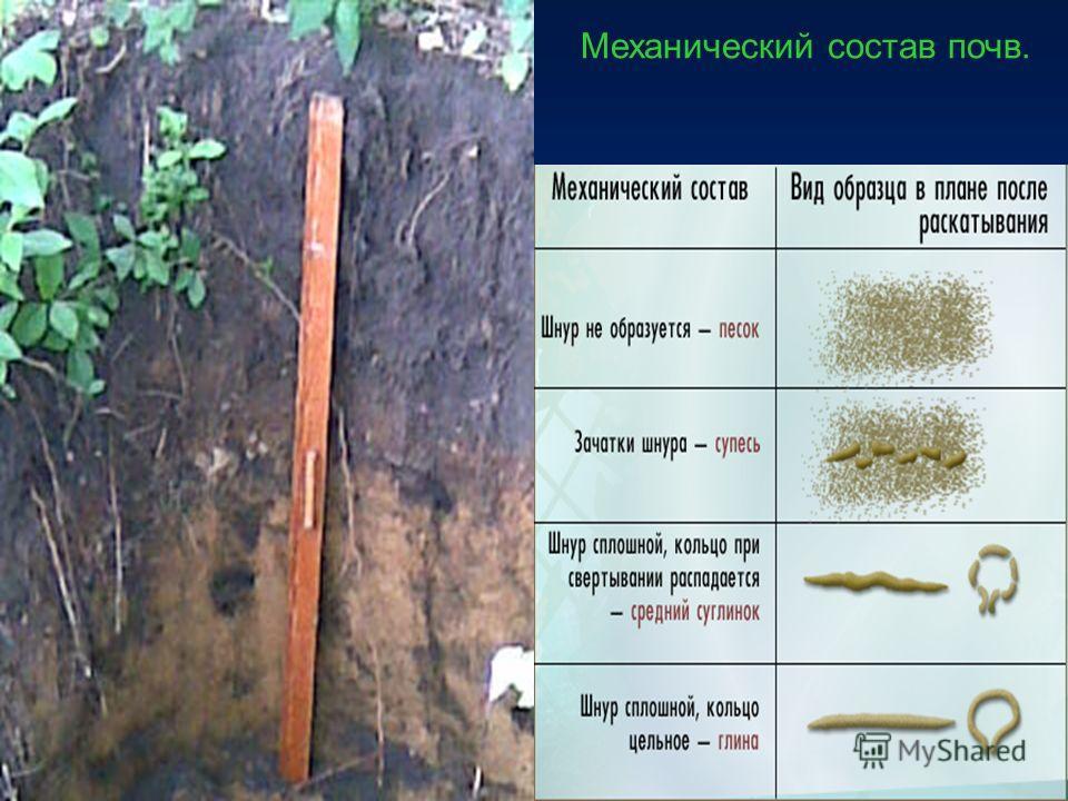 Механический состав почв.