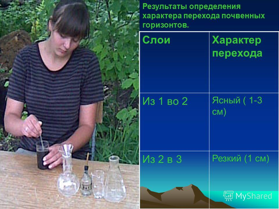 Результаты определения характера перехода почвенных горизонтов. СлоиХарактер перехода Из 1 во 2 Ясный ( 1-3 см) Из 2 в 3 Резкий (1 см)