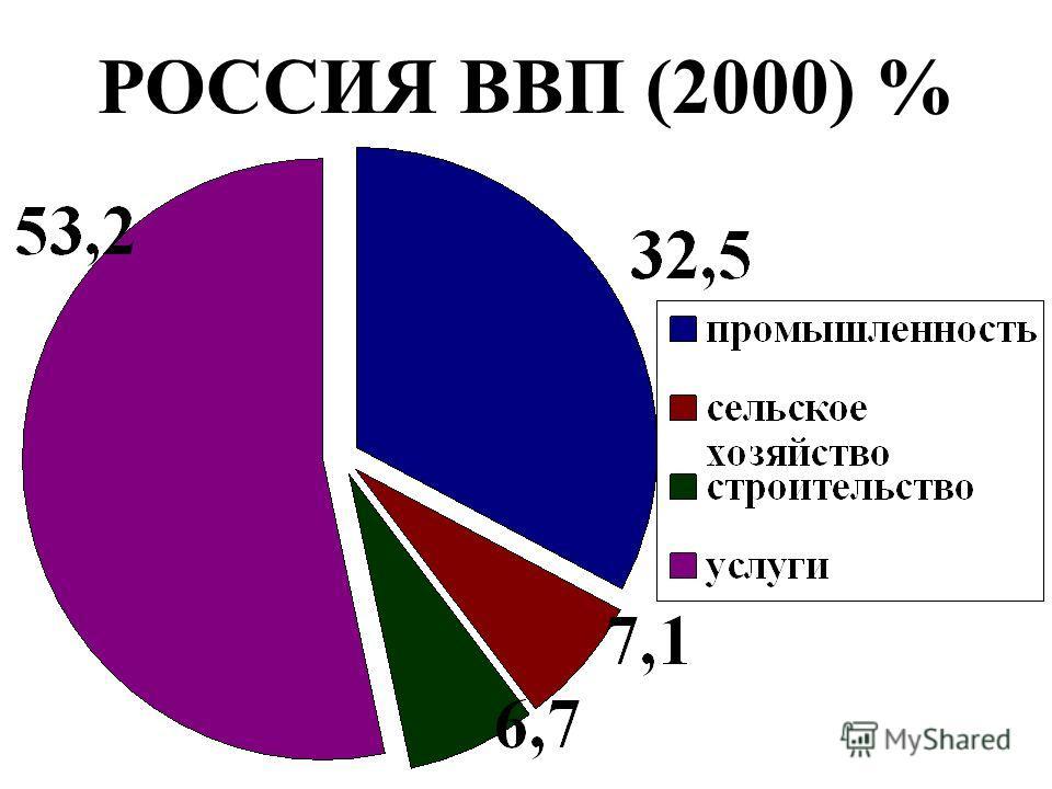 РОССИЯ ВВП (2000) %