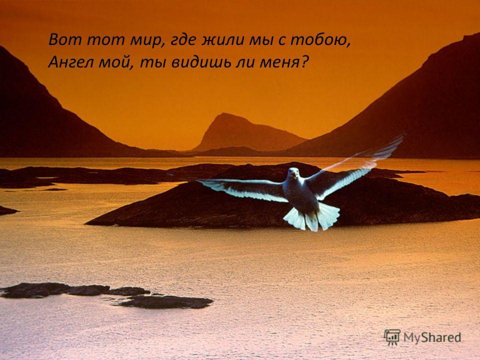 Вот тот мир, где жили мы с тобою, Ангел мой, ты видишь ли меня?