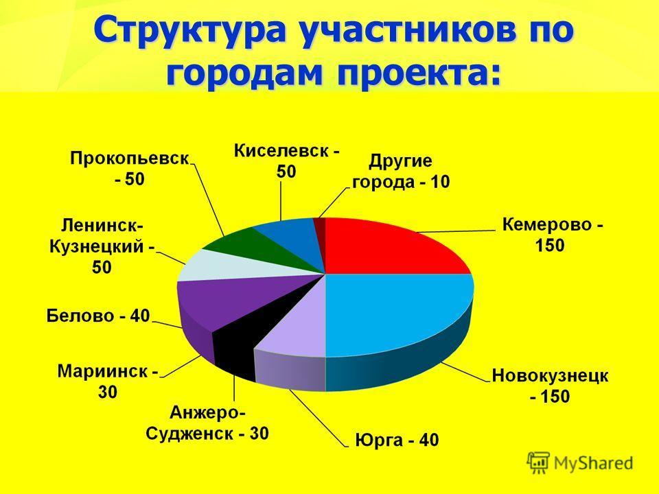 Структура участников по городам проекта: