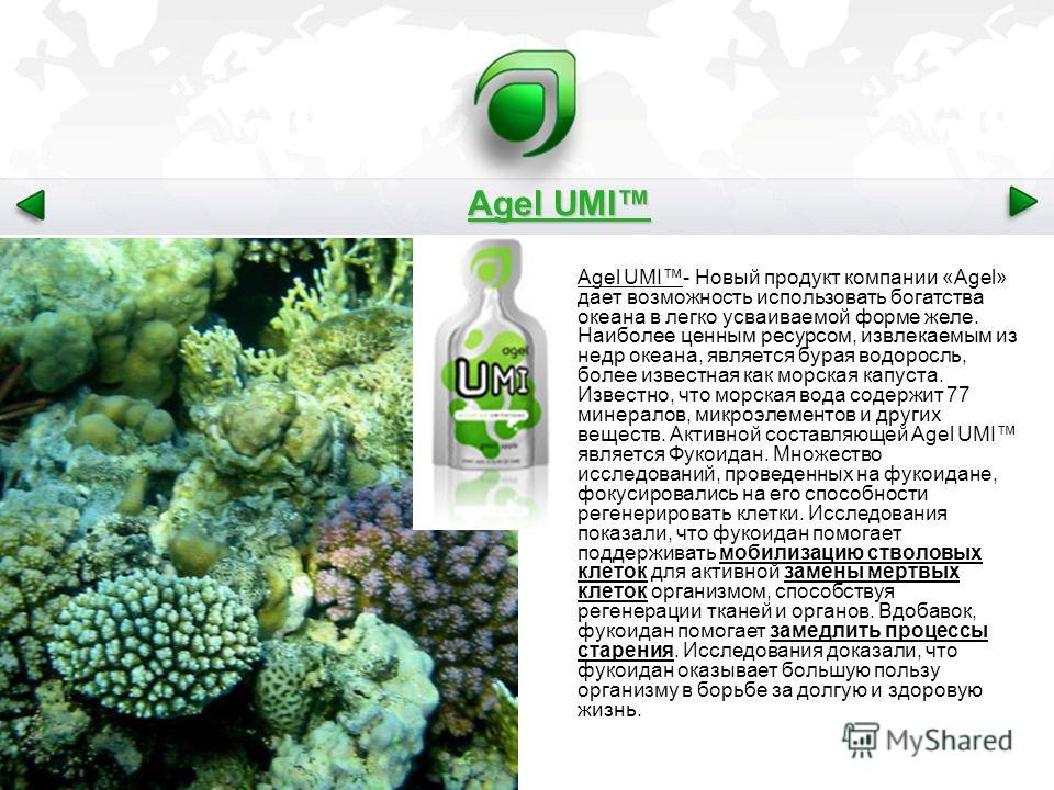 Agel UMI Agel UMI- Новый продукт компании «Agel» дает возможность использовать богатства океана в легко усваиваемой форме желе. Наиболее ценным ресурсом, извлекаемым из недр океана, является бурая водоросль, более известная как морская капуста. Извес
