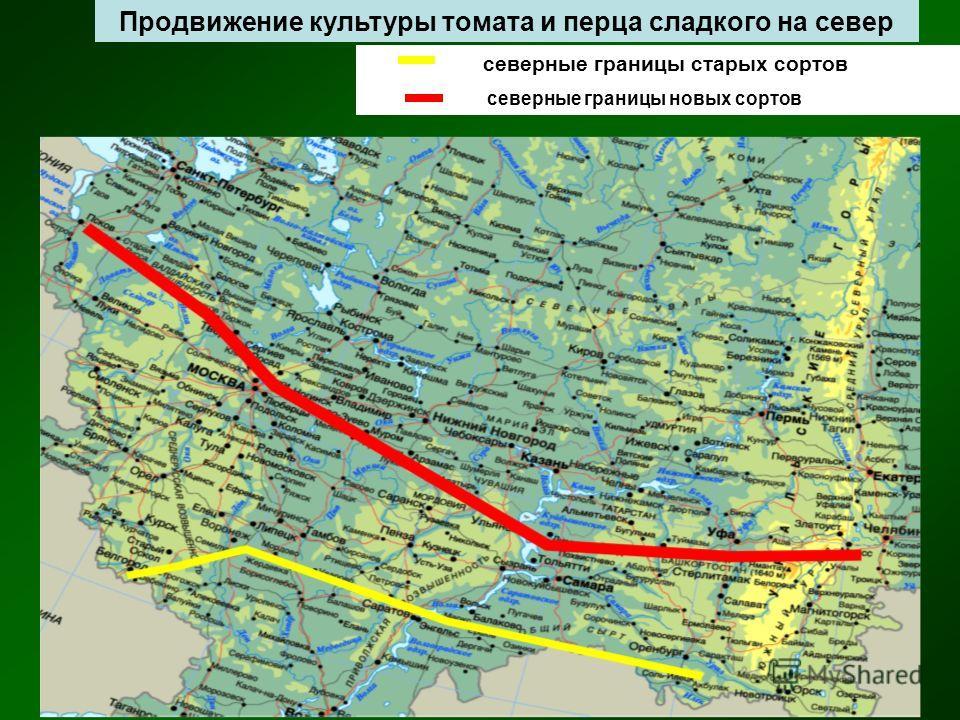 северные границы старых сортов северные границы новых сортов Продвижение культуры томата и перца сладкого на север