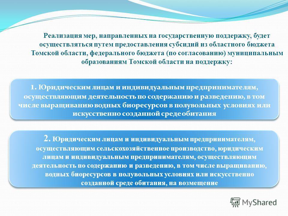 Реализация мер, направленных на государственную поддержку, будет осуществляться путем предоставления субсидий из областного бюджета Томской области, федерального бюджета (по согласованию) муниципальным образованиям Томской области на поддержку: 1. Юр