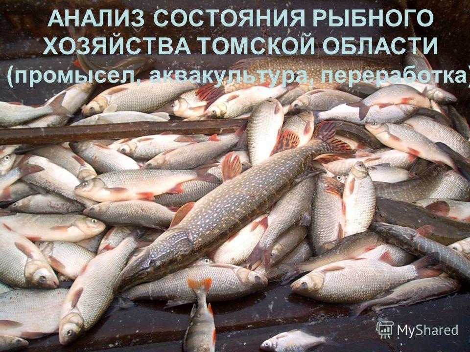 АНАЛИЗ СОСТОЯНИЯ РЫБНОГО ХОЗЯЙСТВА ТОМСКОЙ ОБЛАСТИ (промысел, аквакультура, переработка)