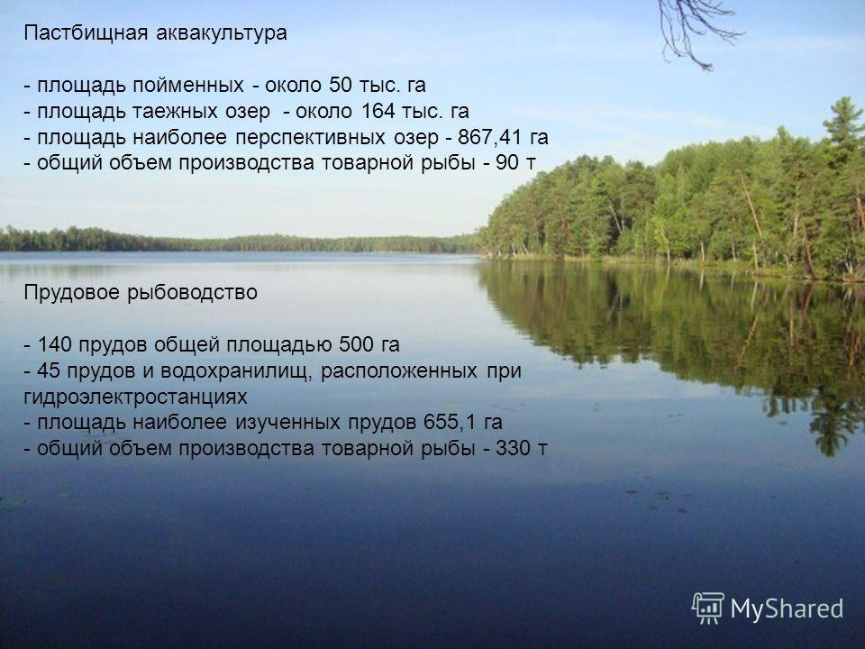 Пастбищная аквакультура - площадь пойменных - около 50 тыс. га - площадь таежных озер - около 164 тыс. га - площадь наиболее перспективных озер - 867,41 га - общий объем производства товарной рыбы - 90 т Прудовое рыбоводство - 140 прудов общей площад