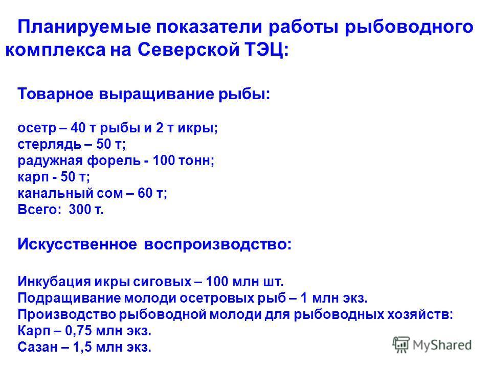 Планируемые показатели работы рыбоводного комплекса на Северской ТЭЦ: Товарное выращивание рыбы: осетр – 40 т рыбы и 2 т икры; стерлядь – 50 т; радужная форель - 100 тонн; карп - 50 т; канальный сом – 60 т; Всего: 300 т. Искусственное воспроизводство