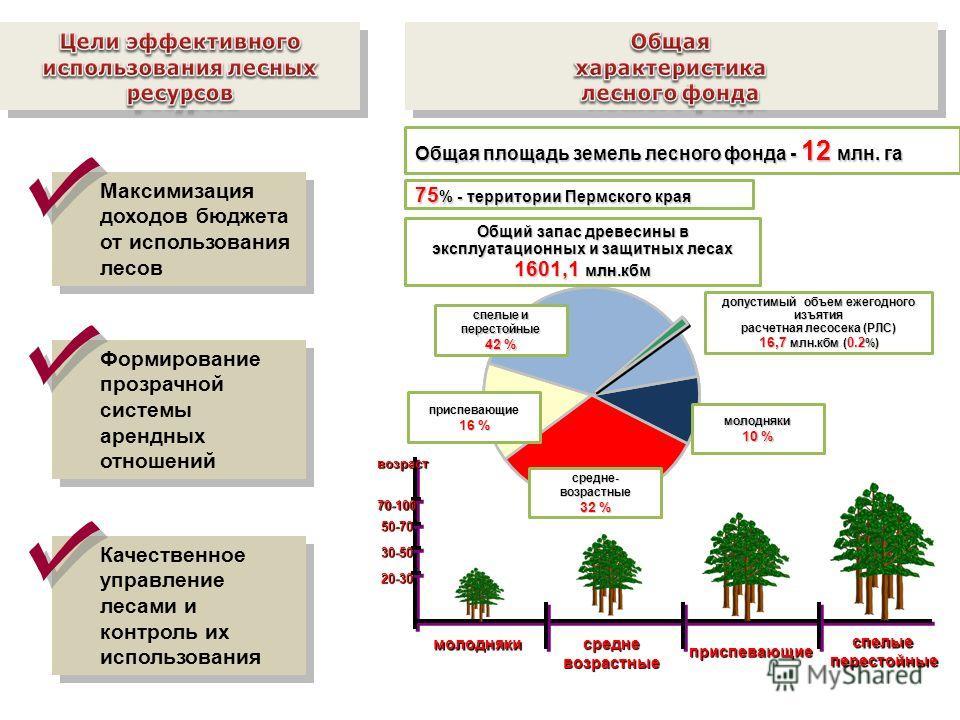 Общая площадь земель лесного фонда - 12 млн. га молодняки средневозрастные приспевающие спелыеперестойные 20-30 30-50 50-70 70-100возраст допустимый объем ежегодного изъятия расчетная лесосека (РЛС) 16,7 млн.кбм ( 0.2 %) приспевающие 16 % спелые и пе