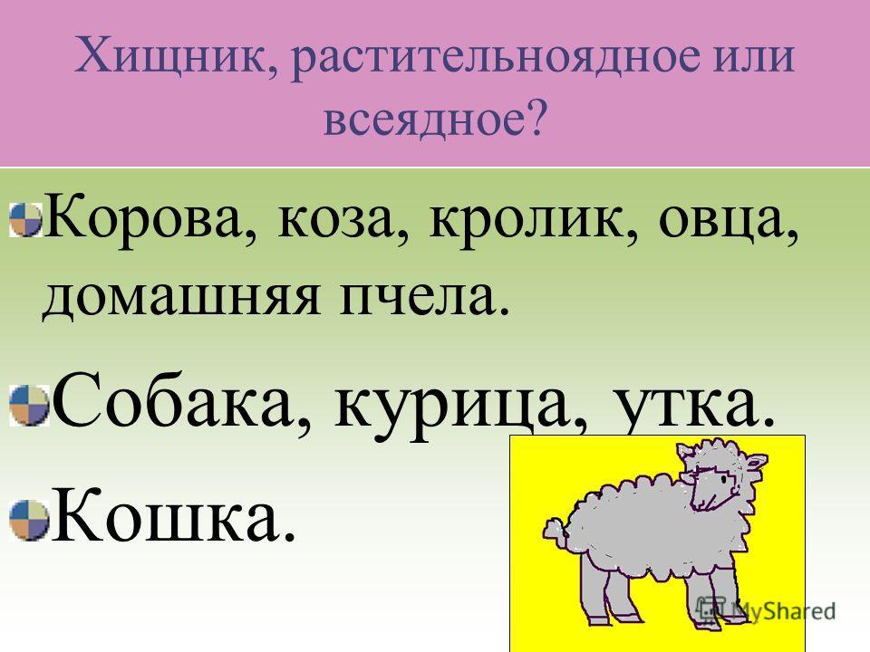 Проверь себя. Млекопитающие. Кошка, верблюд, овца, лошадь, корова, собака, коза, свинья, олени. Птицы. Утка, перепёлка, гусь, почтовый голубь. Рыбы. Телескоп, меченосец. Насекомые. Тутовый шелкопряд.