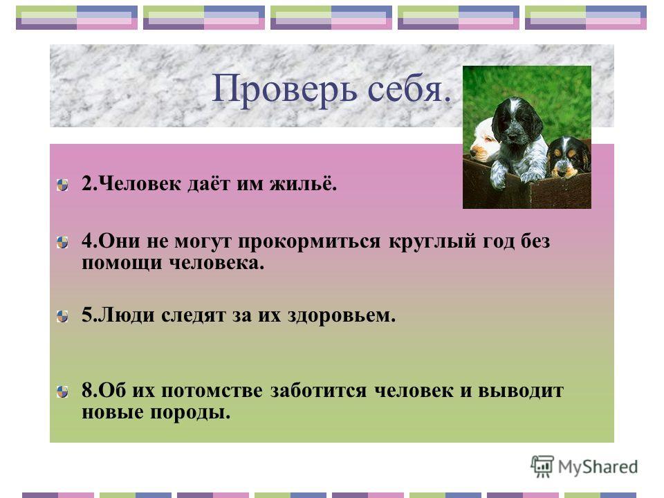 Домашние животные урок наш мир 2класс