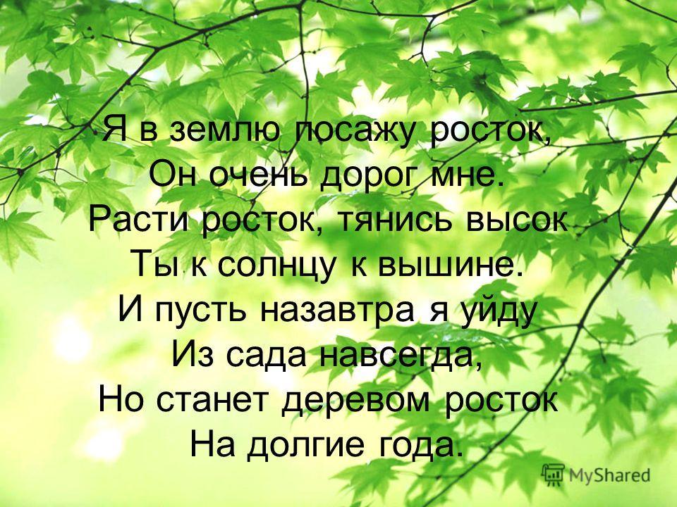 Я в землю посажу росток, Он очень дорог мне. Расти росток, тянись высок Ты к солнцу к вышине. И пусть назавтра я уйду Из сада навсегда, Но станет деревом росток На долгие года.