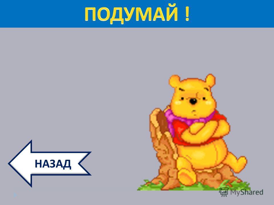 ННАЗАД