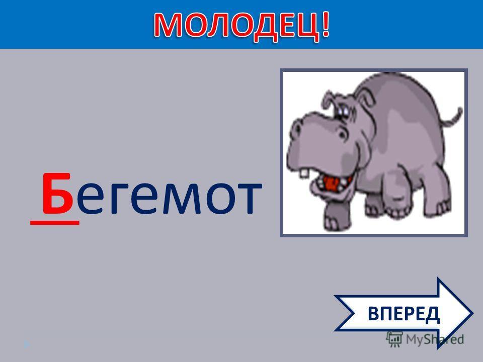 Бегемот ВПЕРЕД